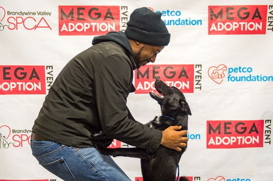 aaaee0656 1,181 cats and dogs find homes during Mega Adoption Event