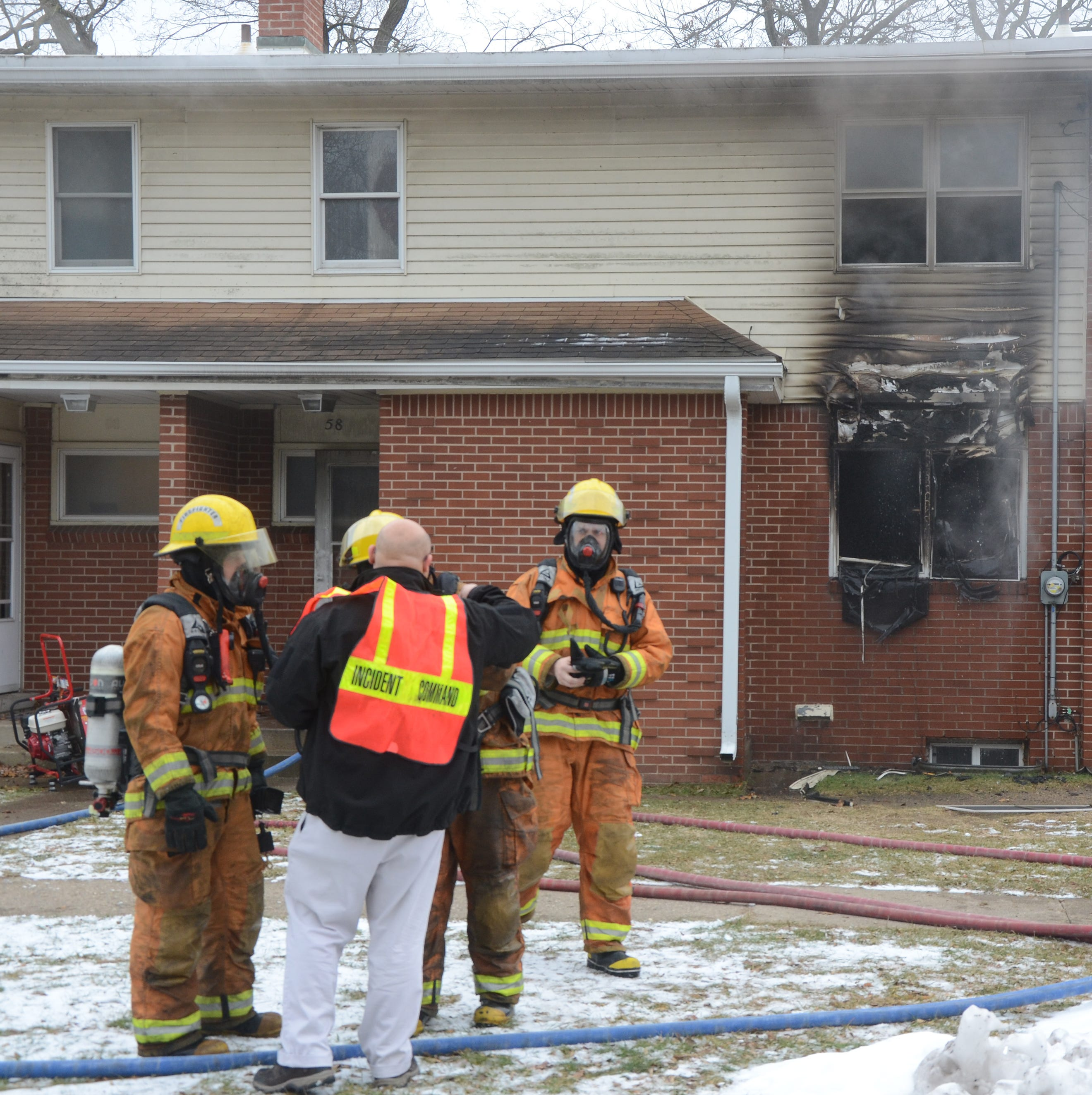 One dog dies, another saved in Springfield fire