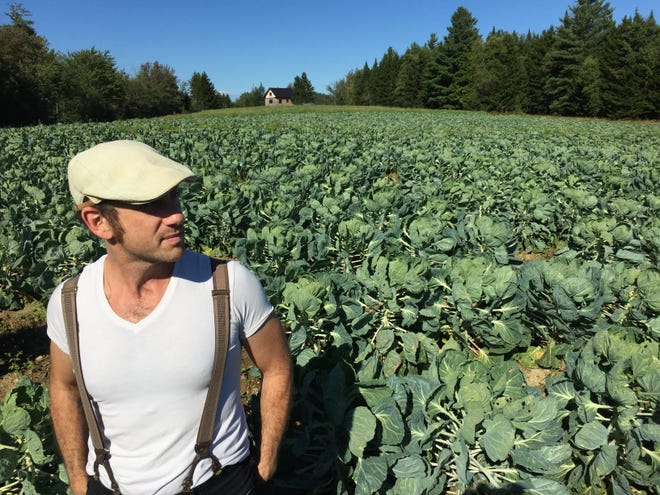Kris Gruen stands among the Brussels sprouts at the organic farm run by his partner, Jaiel Pulskamp, in Worcester.