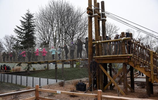 Students from Holy Redeemer Grade School  walk across the new rope bridge that extends 80 feet through the trees in the red pandas habitat at the Detroit Zoo.
