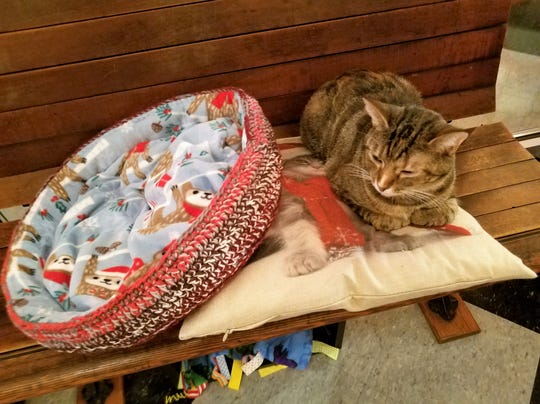 River Kitty Cat Cafe, crocheted and hand-sewn cat bed by Wendy Trammel.