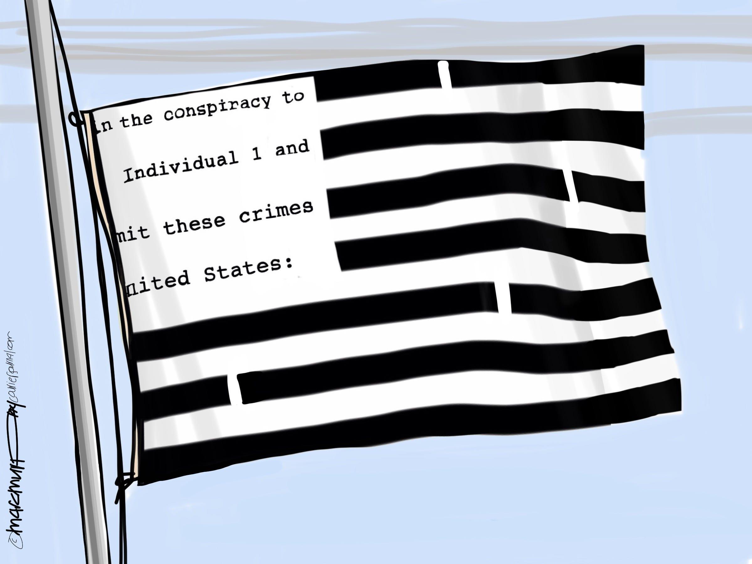 Redacted America