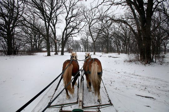 Snowy days are perfect for a horse-drawn sleigh ride at Apple Holler.