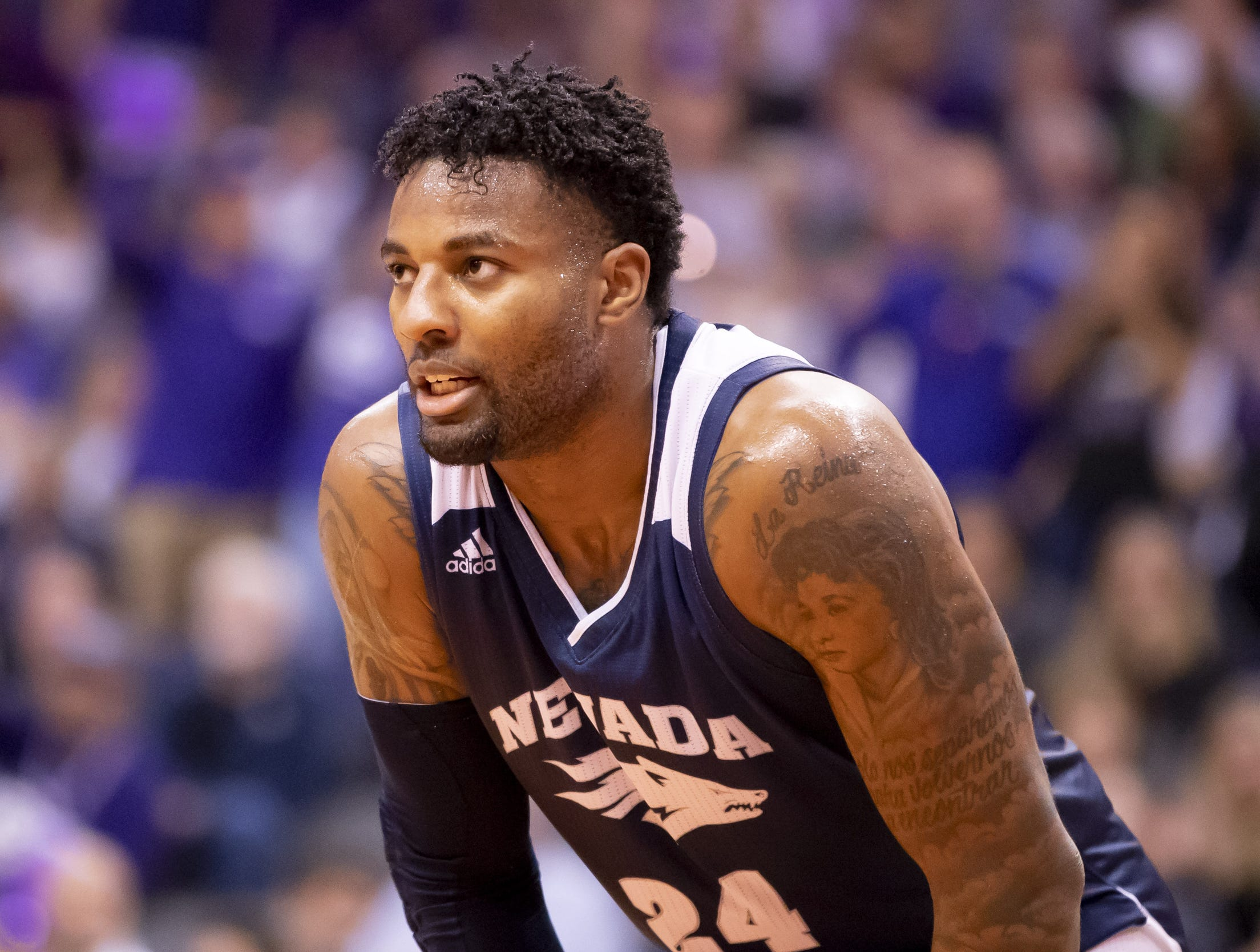 Jordan Caroline (24) of Nevada Wolf Pack looks on during the 2018 Jerry Colangelo Classic against the Grand Canyon Antelopes at Talking Stick Resort Arena on Sunday, December 9, 2018 in Phoenix, Arizona.