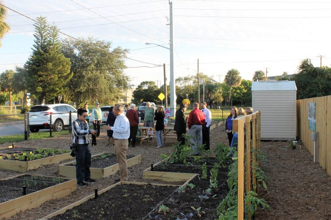 The fenced area features raised garden beds and trellises , as part of House of Hope's Gardening to Grow Healthy Children and Families program, which focuses on increasing awareness of the health benefits of good nutrition and the basics of gardening.