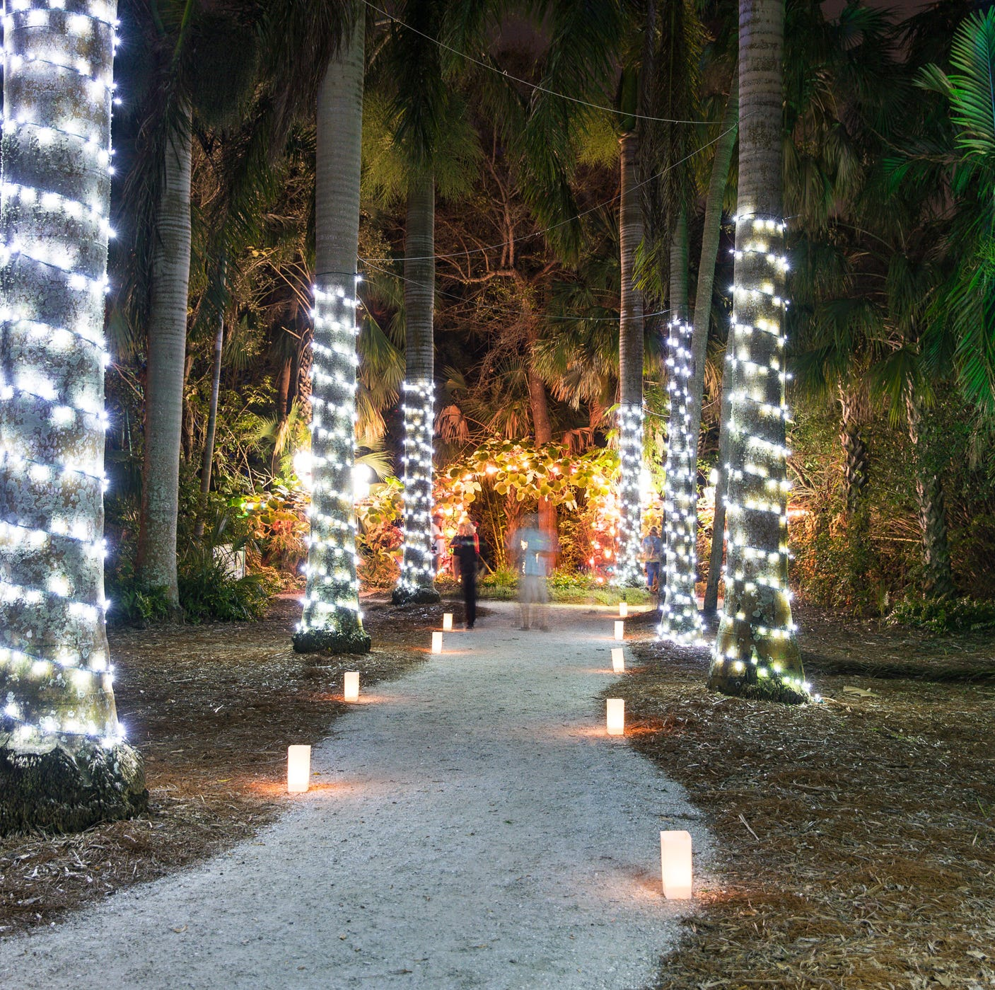 Follow the map to see the best light displays on the Treasure Coast