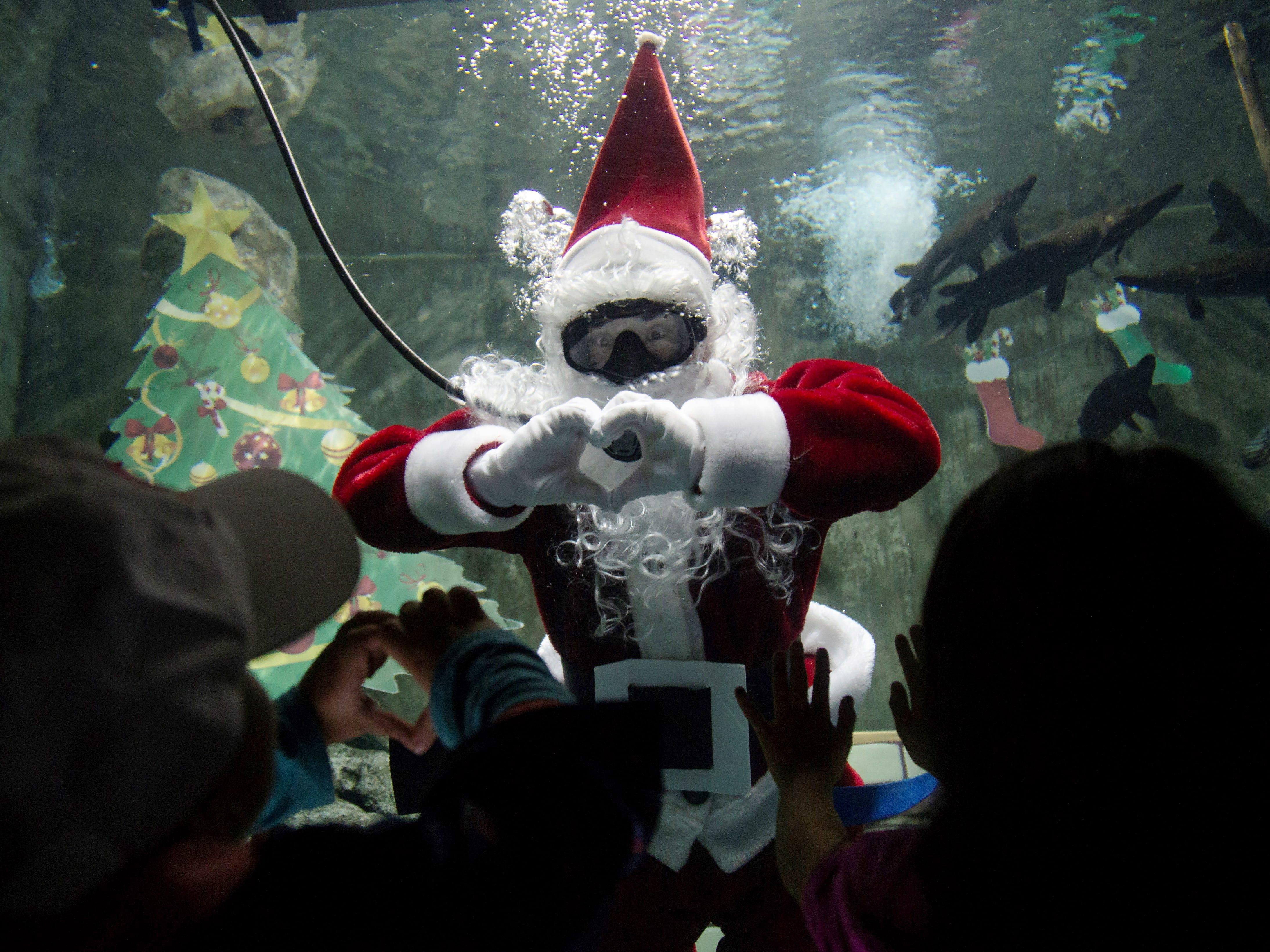 Santa Claus swims in the aquarium of the Guadalajara Zoo in Guadalajara, Mexico, Dec. 9,  2018.