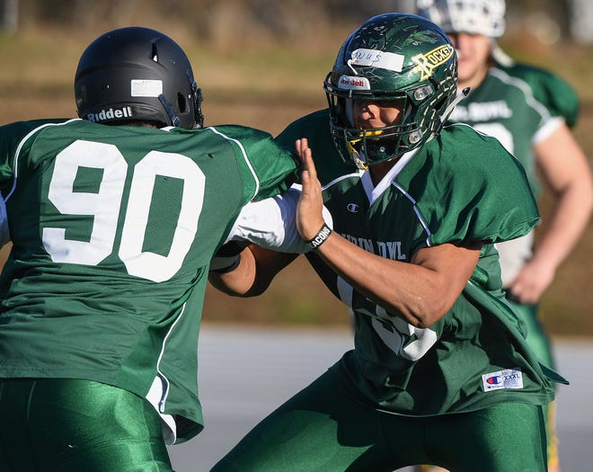 Reynolds offensive lineman CJ Elmonus was one of two WNC players selected to the AP all-state football team.