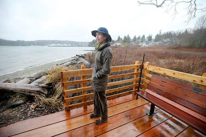 Viewpoints at Hawley Cove Park on Bainbridge Island are connected by new boardwalks. On clear days, the viewpoints will provide vistas of Mount Rainier and Washington State Ferries ... but Tuesday was not a clear day.