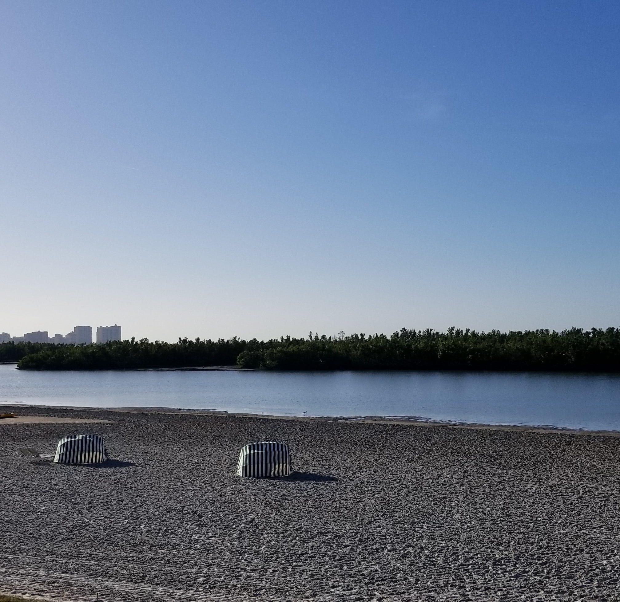 More than 20 help clean up Tigertail Beach Park