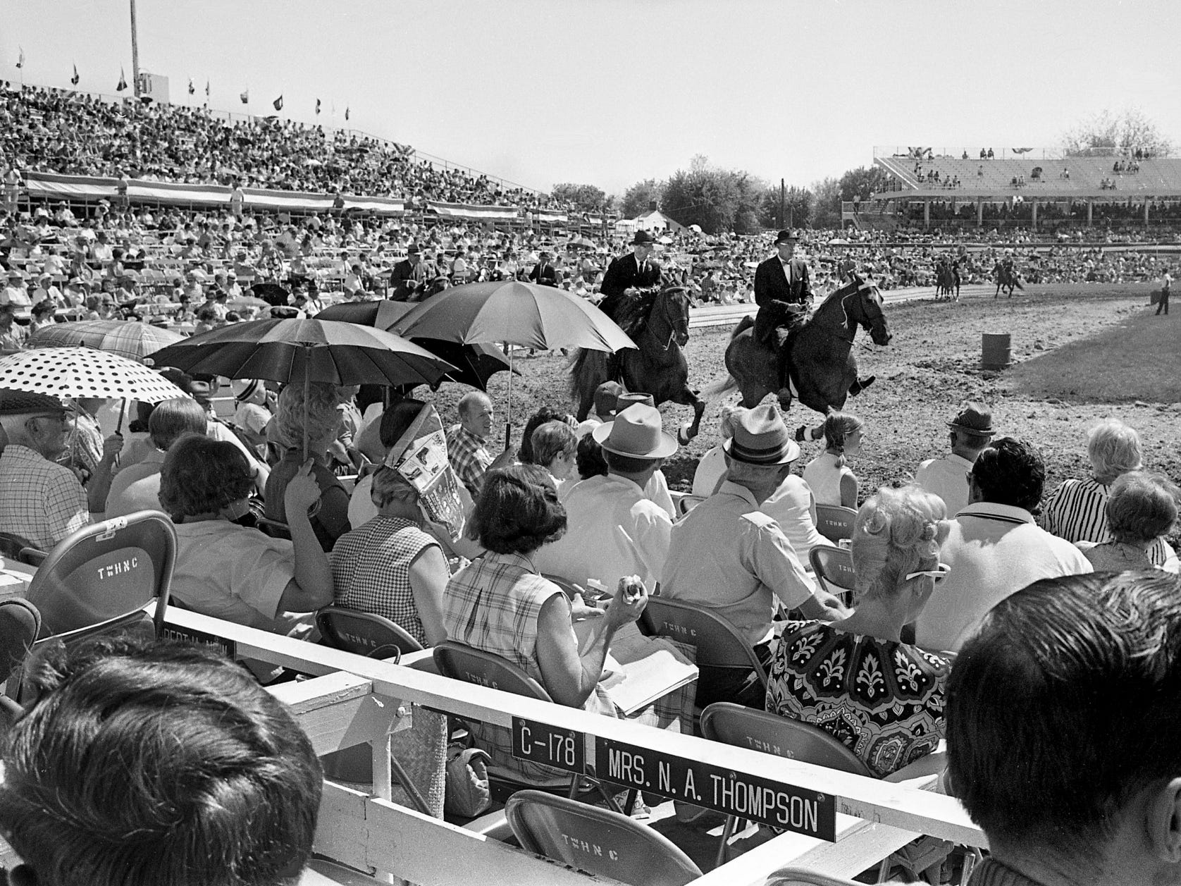 Thousands of sun-drenched fans watch the action during the 30th annual Tennessee Walking Horse National Celebration on Sept. 6, 1968, in Shelbyville, Tenn.