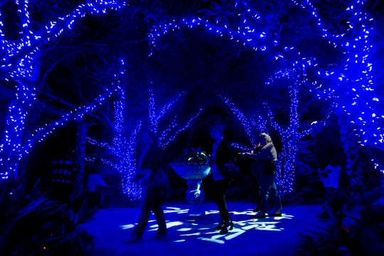 Guest explore a section of the Naples Botanical Garden during Night Lights in the Garden, Friday, Dec. 7, 2018.