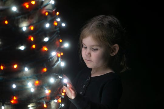 Kate Szecsodi inspects a lighting display on a tree, Friday, Dec. 7, 2018 at the Naples Botanical Garden.