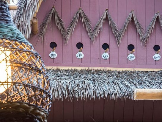 The avian stars of the Enchanted Tiki Room live not too far from The Tropical Hideaway.