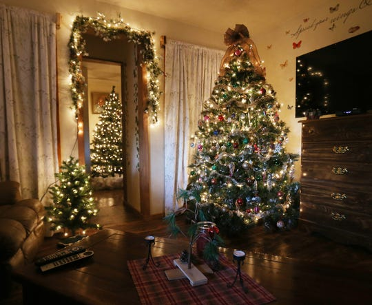Multiple Christmas trees visible from the family room at the home of Lori and Wayne Theiss in Beacon on December 4, 2018.