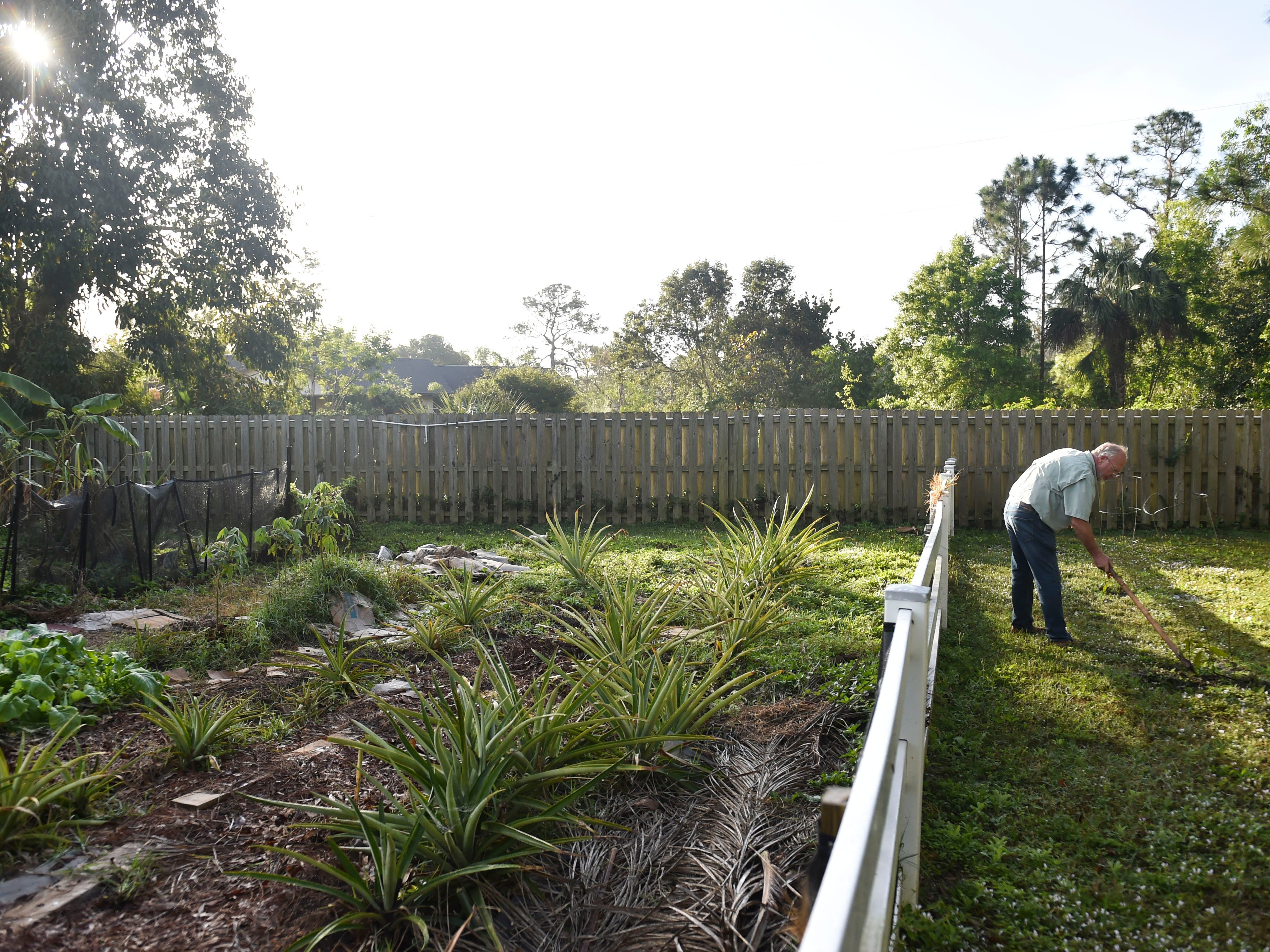 """Chris Englund's history with Love and Hope in Action began five years ago when he offered them a banana tree and was asked to plant a garden. Englund, seen Feb. 13, 2018 at LAHIA in Stuart  has been contributing to the faith-based non-profit and the East Stuart community ever since, gifting excess produce to his former Meals on Wheels clients. """"There's a great need in our society to be out there building some bridges and connections,"""" Englund said."""