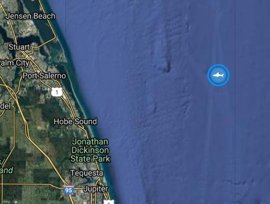 Kathrine the Shark's latest ping was offshore between Port Salerno and Hobe Sound.