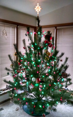 Christmas tree and its decorations have become a family history tree in the Apps family.