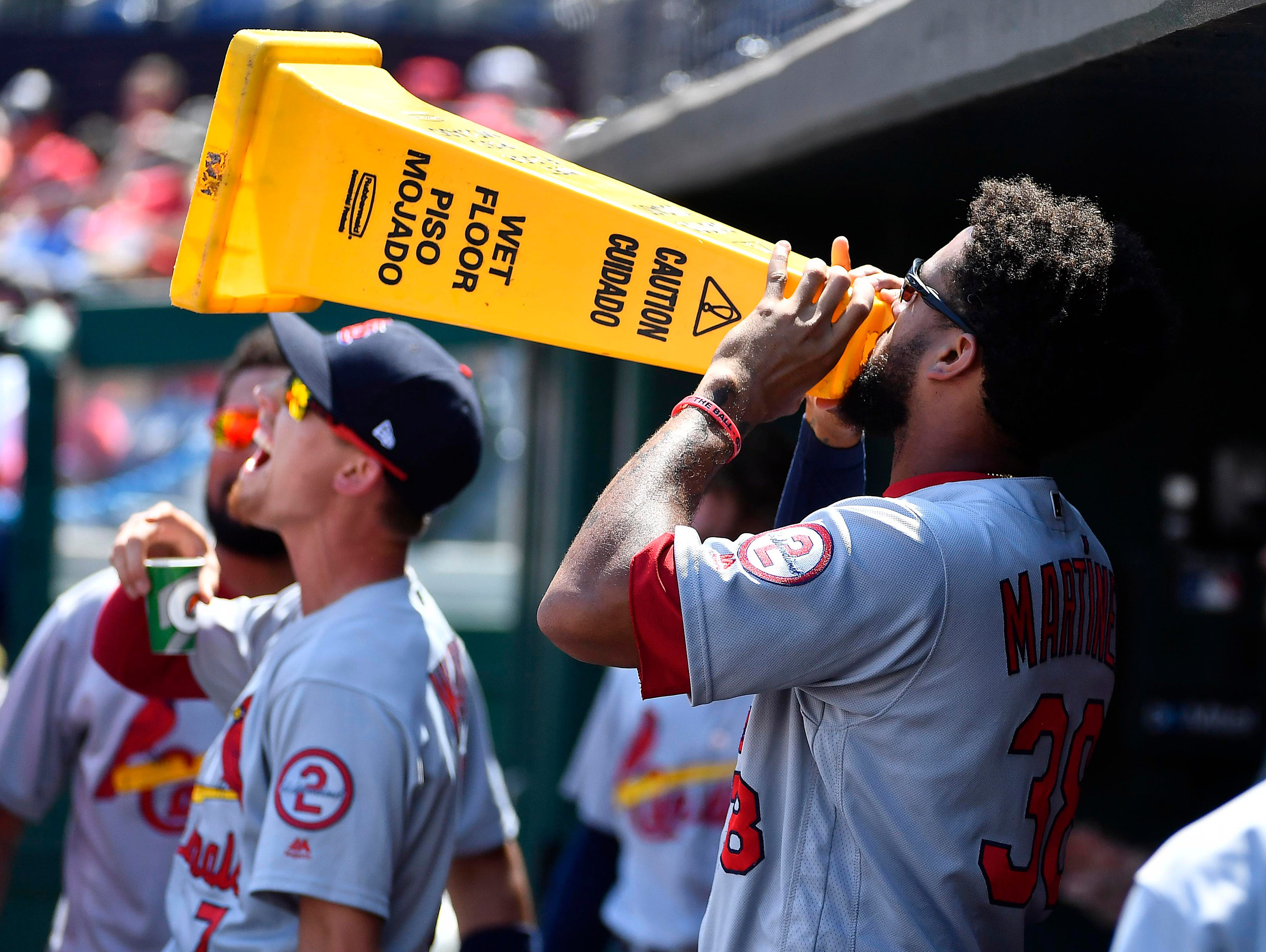 Sept. 3: St. Louis Cardinals first baseman Jose Martinez yells from the dugout against the Washington Nationals during the first inning at Nationals Park.