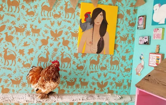 "One of Danielle Raad's chickens, a cochin bantam named Woody, sits on a perch in front of a hand-stenciled wall in Raad's ""The Breakfast Club"" coop. Raad painted the portrait of a woman with a chicken perched on her shoulder."