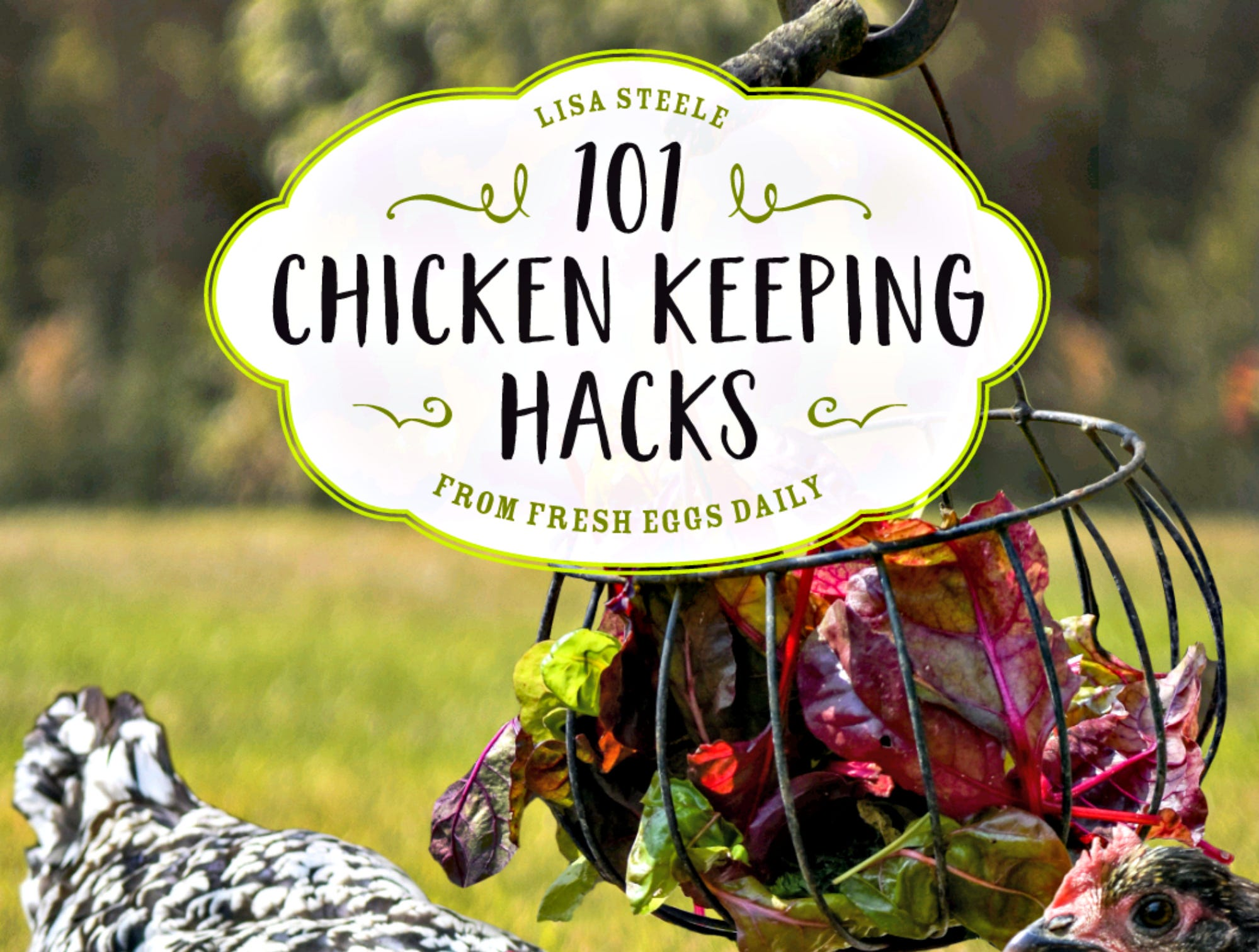 "Fresh Eggs Daily proprietor Lisa Steele is tapping into the chickens-as-pampered-pets trend with her latest book, ""101 Chicken Hacks from Fresh Eggs Daily: Tips, Tricks and Ideas for You and Your Hens."" It was published in October."