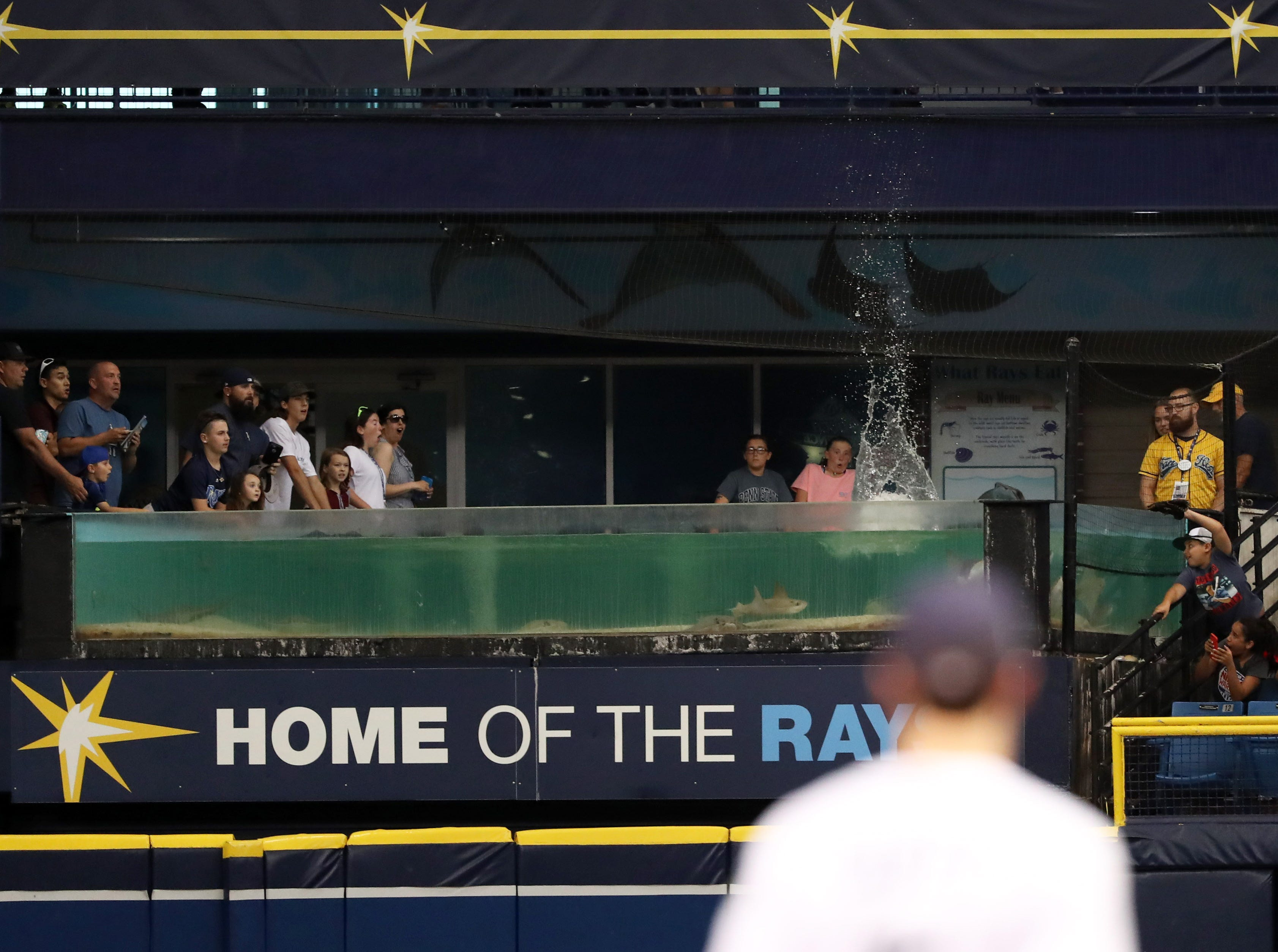 Aug. 1: Los Angeles Angels right fielder Kole Calhoun hits the ball into the Rays fish tank for a home run during the first inning against the Tampa Bay Rays.