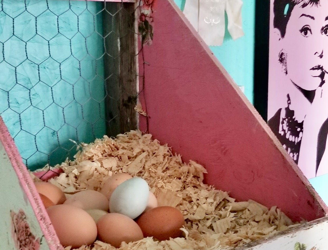 "Danielle Raad's mother decoupaged the nest boxes in ""The Breakfast Club"" chicken coop with roses from paper napkins."