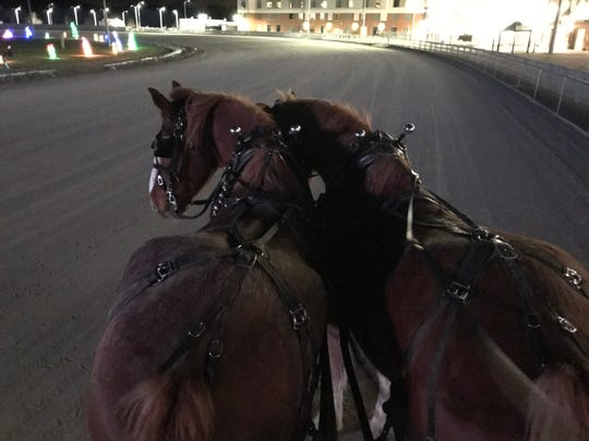 At Tioga Downs Winterfest, attendees can take horse-drawn wagon rides around the racetrack.