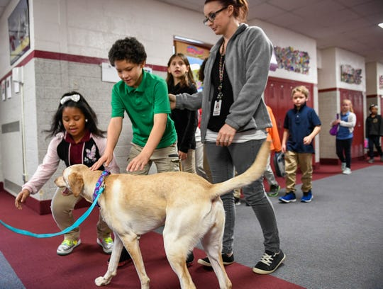 Students at Evansville's Harper Elementary School stop to greet Chloe, the school's official licensed therapy dog, as they pass in the hallway Wednesday, December 12, 2018.