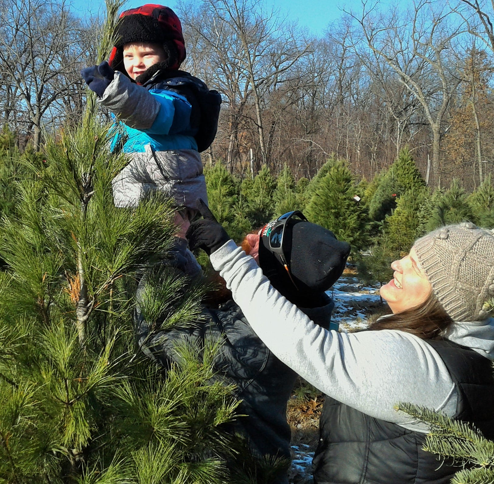 Local Christmas tree farms sell out early to 'those who cut'