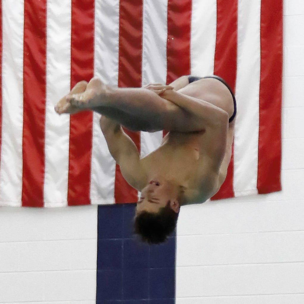 Who are the top 5 boys swimmers and divers in Livingston County?
