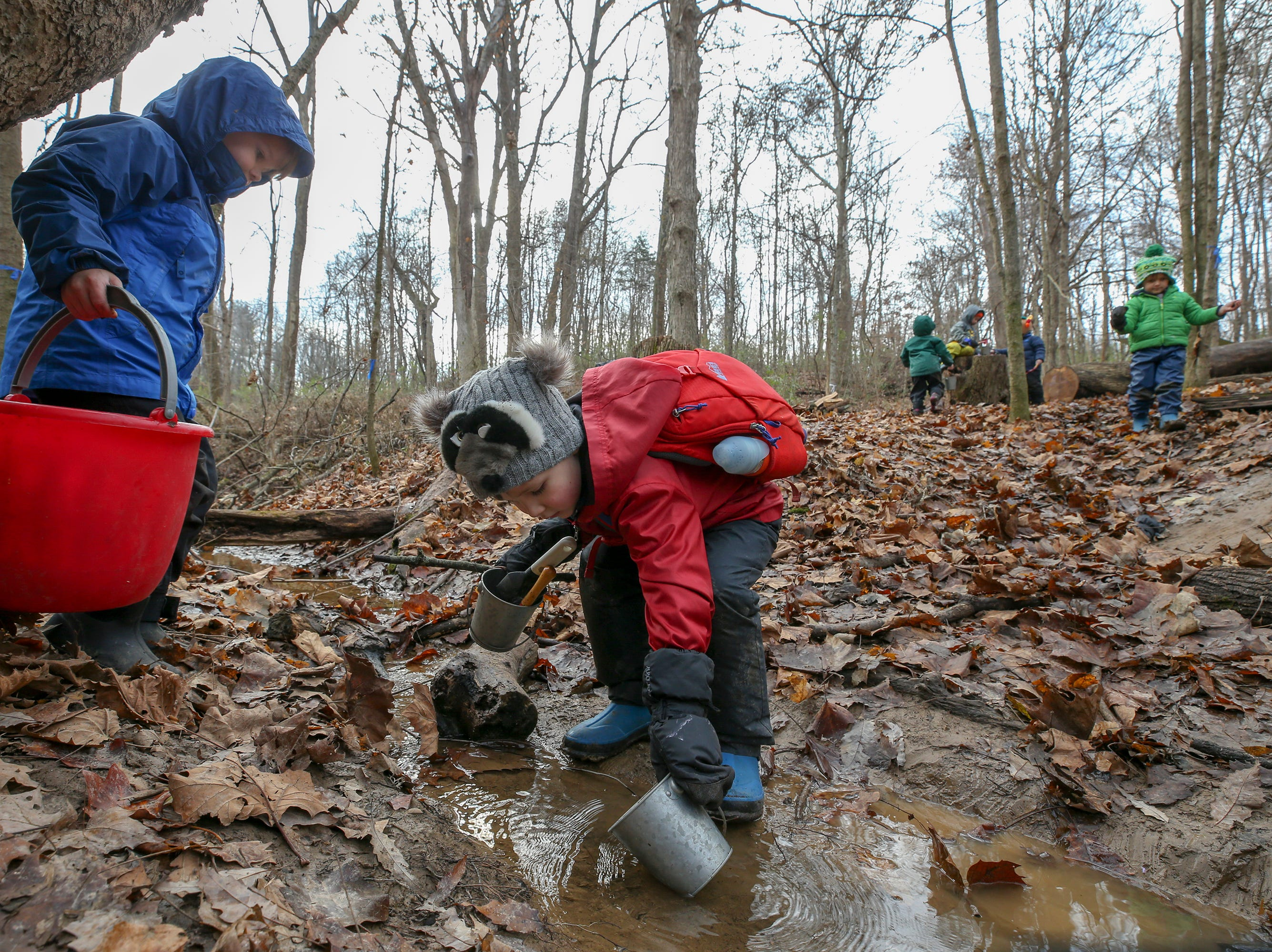 Will Clark gathers water from a stream at Thrive Forest School at Creasey Mahan Nature Preserve.November 19, 2018