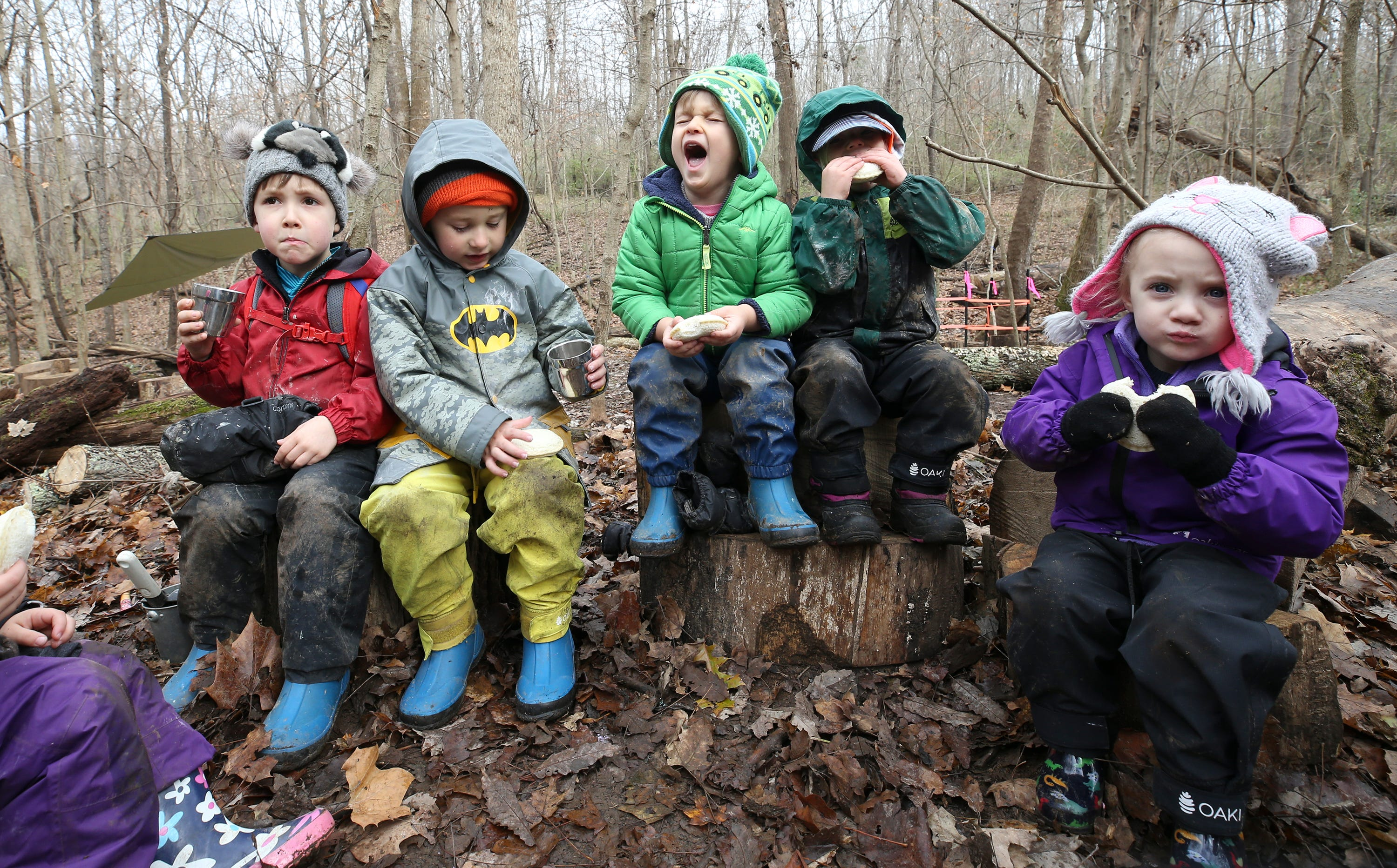 Would you send your kids to preschool in the forest?