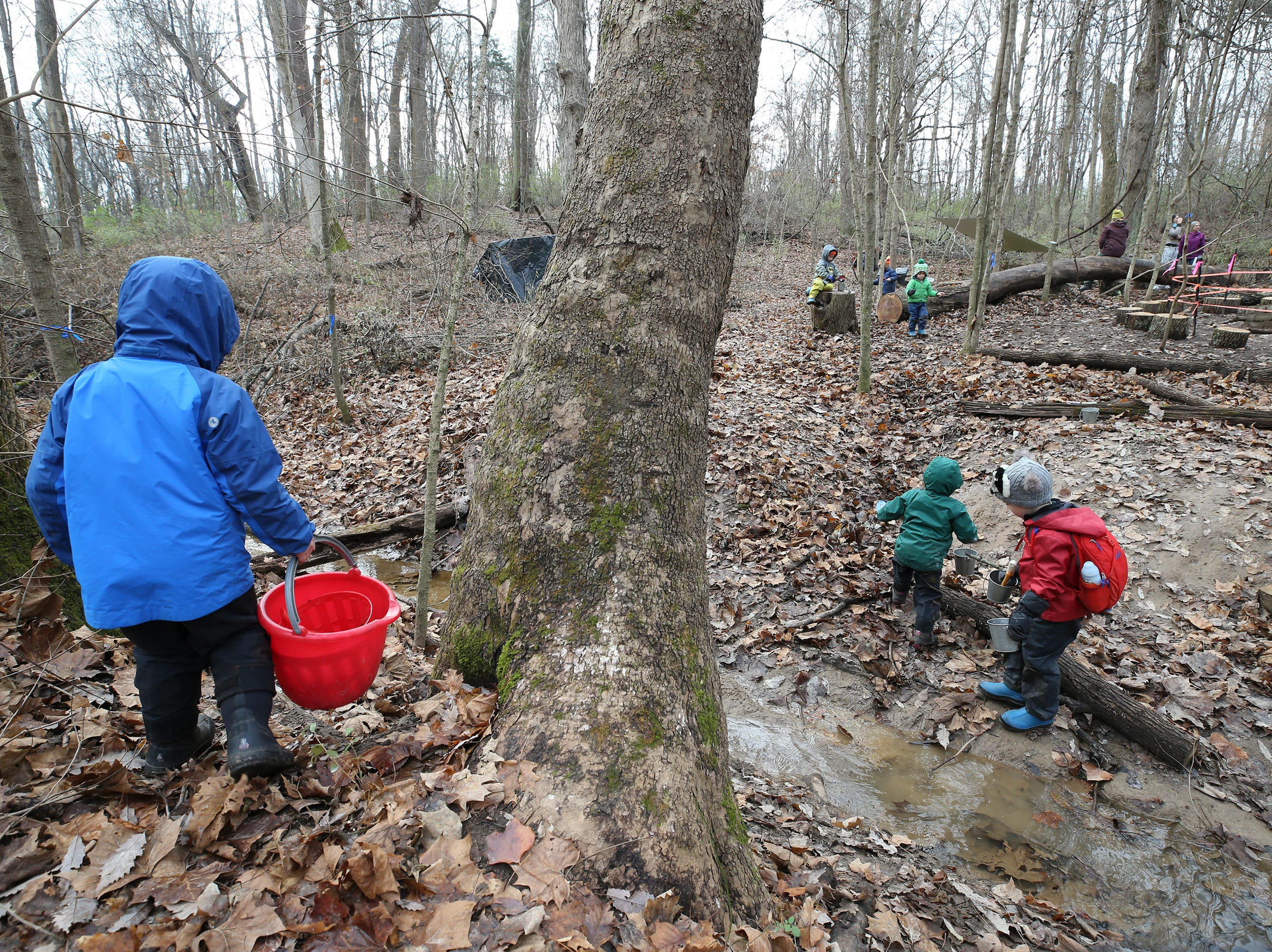 Students play in the woods by a stream at Thrive Forest School at Creasey Mahan Nature Preserve.November 19, 2018