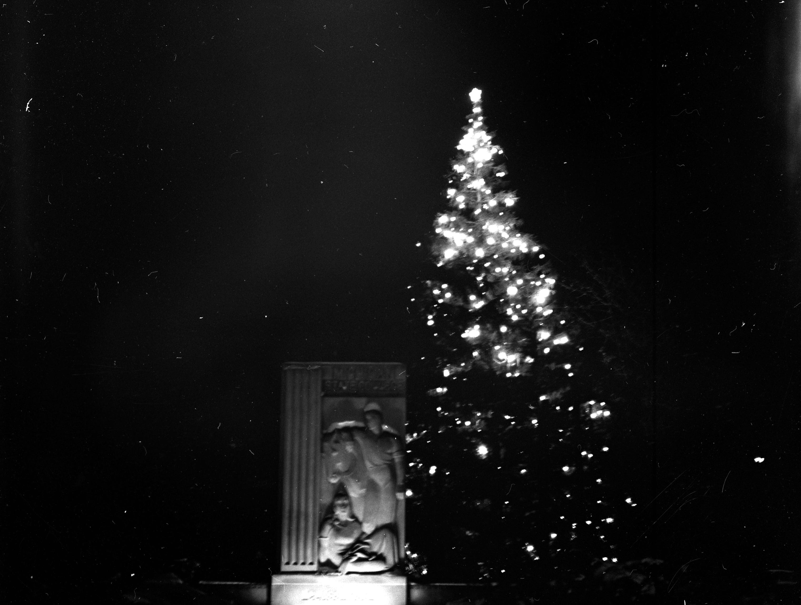 A lighted Christmas tree at night next to the Abbot Road entrance marker on MSU's Campus, in 1953.