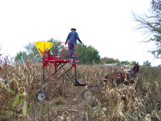 An Amish farmer broadcasts cover crop seeds with a horse-drawn highboy seeder in fall 2017 near Berne, Ind. The Adams County Soil and Water Conservation District purchased the specialized seeder to help Amish farmers, who do not use motorized equipment. It's part of Indiana's goal of reaching 5 million acres of cover crops by 2025.
