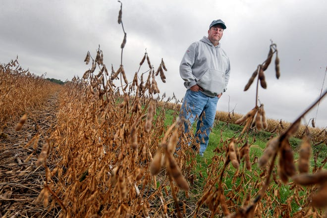 Joel Rauenhorst stands Oct. 5, 2018 on a buffer strip next to a field of soybeans on his farm in Easton, Minn. A Minnesota law requires buffer strips near waterways to reduce runoff, but Rauenhorst said there are less costly methods that would work.