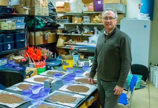 Kevin Fermanich, a University of Wisconsin-Green Bay professor and expert in sustainable agriculture, stands Nov. 9, 2018, by soil samples at his laboratory. Fermanich predicted it was take years to first persuade farmers to apply less manure to their fields and then for crops to take up excessive nutrients.