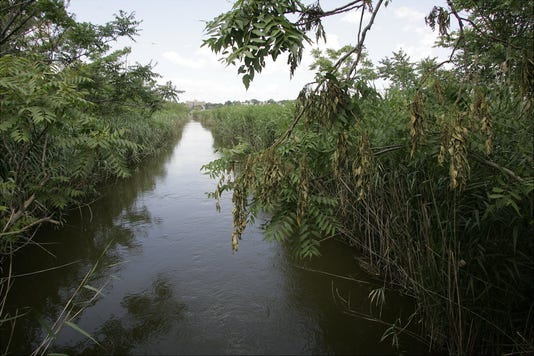 Ackerman Creek in the Meadowlands