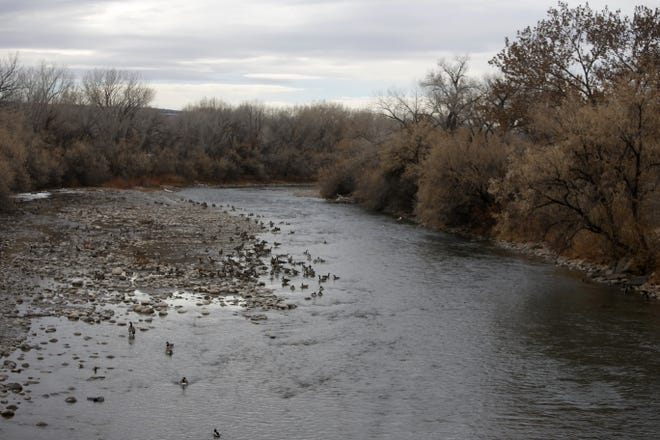 City officials say people enjoy quiet areas of Animas Park,  where the Animas River flows through and deer roam, so any aerial adventure park would go into a more developed area of Berg Park East near an existing playground.