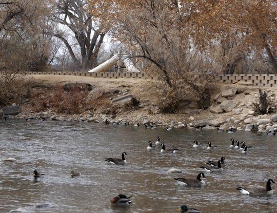 The Animas River flows through Berg Park East Wednesday in Farmington.