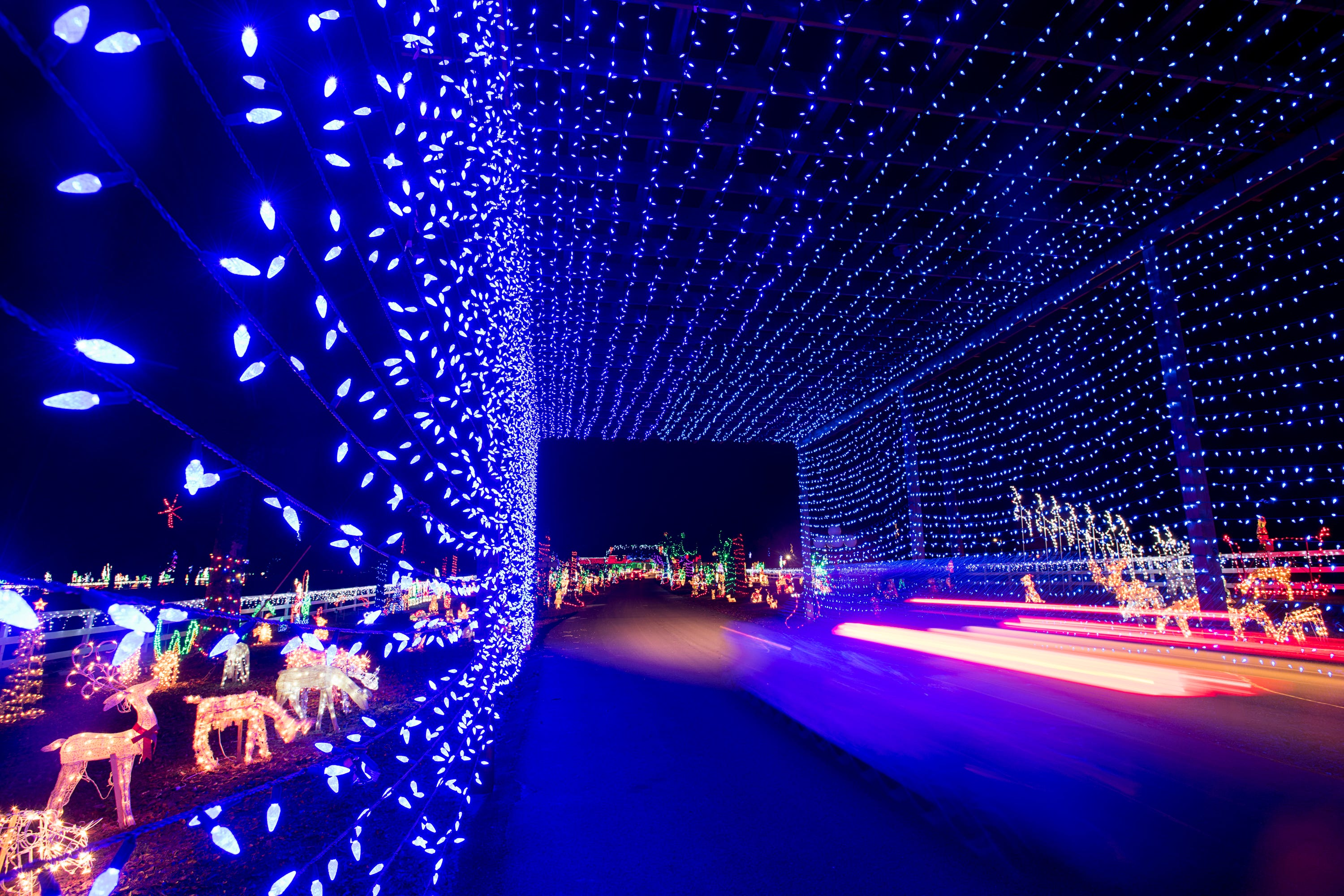 Christmas Light Fight.Take A Virtual Tour Of A Milton Christmas Light Display Garnering National Attention