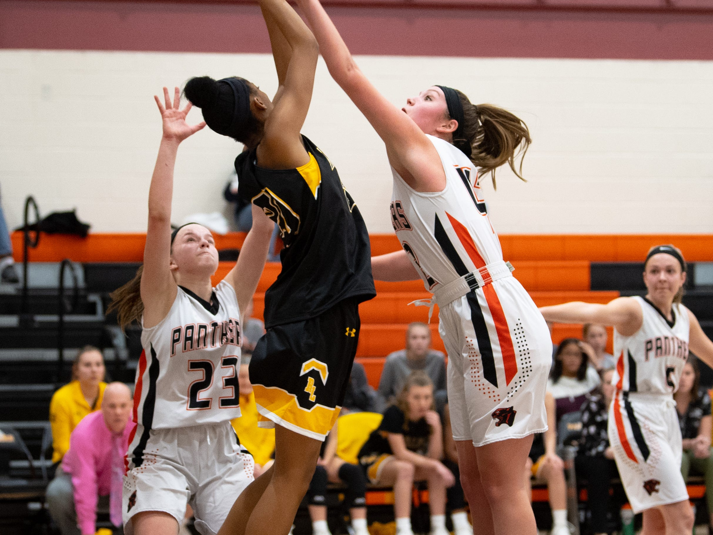 Makiah Shaw (20) of Red Lion receives the pass during the girls' basketball game between Central York and Red Lion at Central York, Tuesday, December 11, 2018. The Panthers defeated the Lions 40-38.