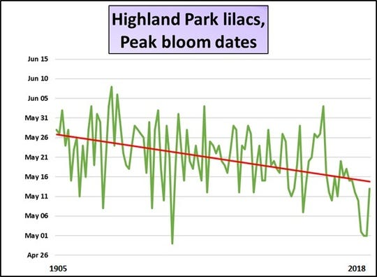 Red trend line shows ever-earlier bloom dates.
