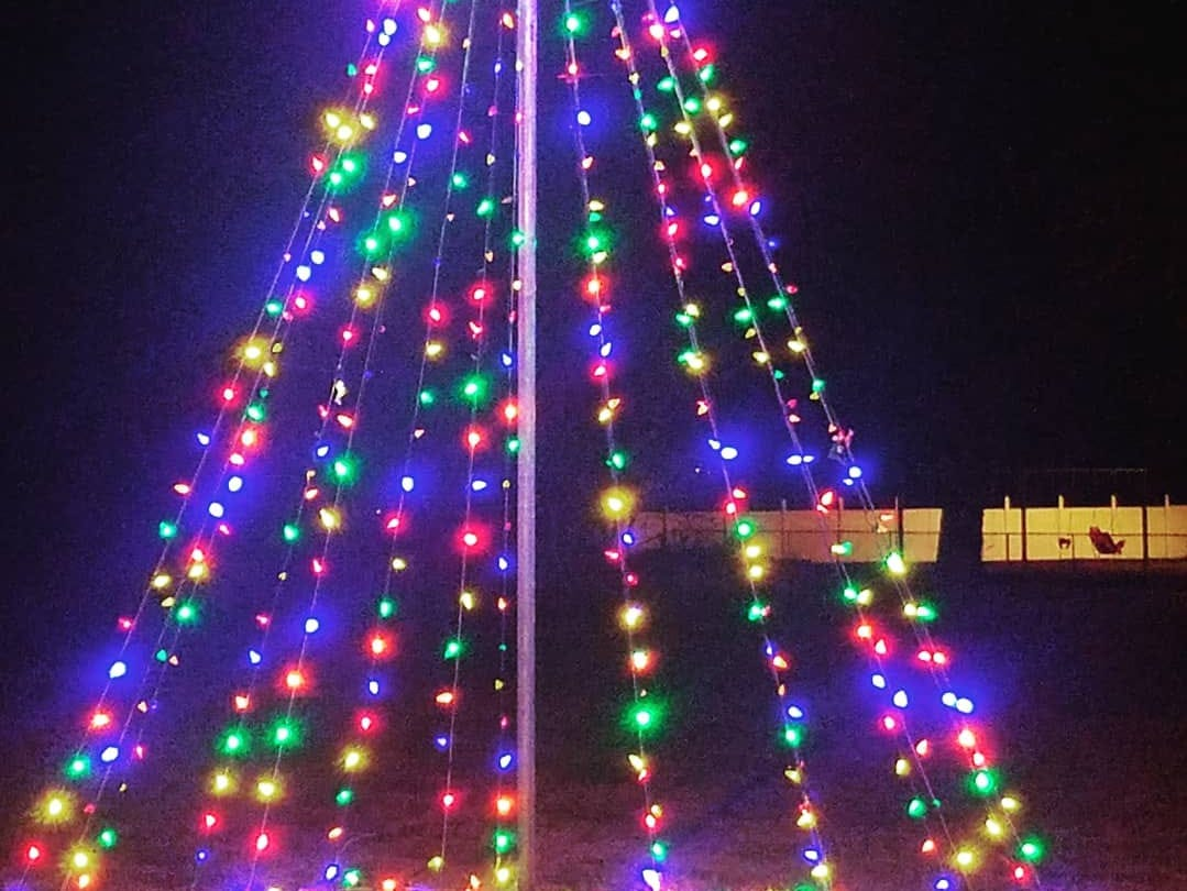 PHOTOS: Merry Cheriton - town celebrates the holidays with new events