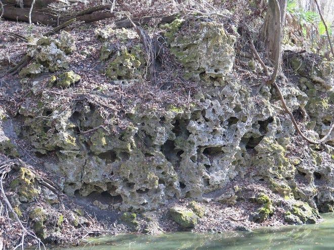 "Florida's ""swiss cheese"" limestone bedrock."