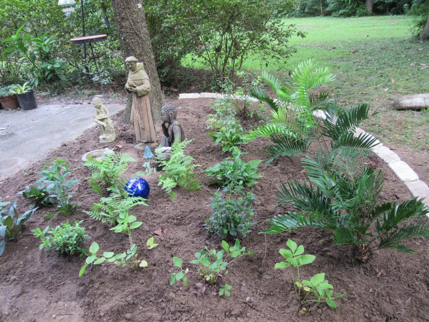 Resolve to recharge the aquifer with a rain garden