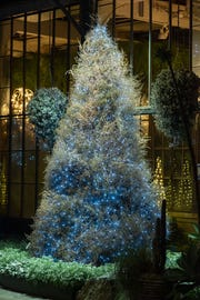 The 12-foottumbleweed tree, made out of tumbleweeds imported from the American Southwest, decorates the silver garden at Longwood Gardens.
