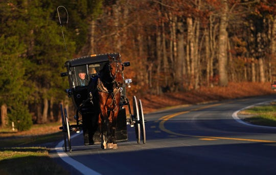 An Amish man drives his buggy down Pearsons Corner Road in Dover, De. in the late afternoon on Thanksgiving Day.