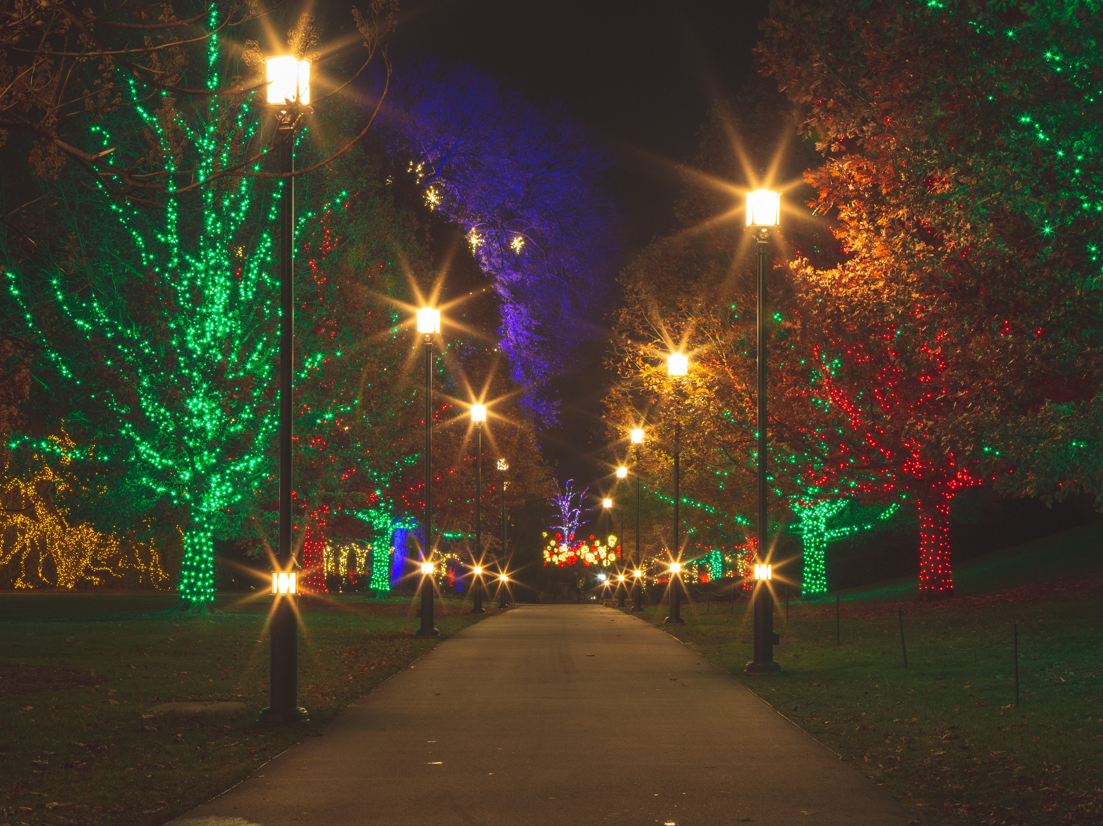 More than 500,000 lights on 150 trees add sparkle to the grounds during A Longwood Christmas in 2018.